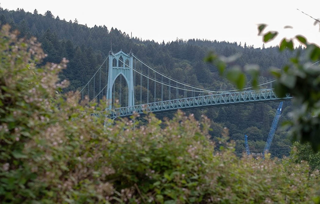 St. Johns Bridge with Forest Park in the background
