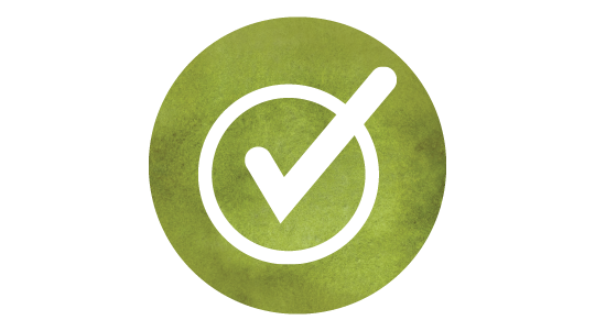 Icon of circle with checkmark