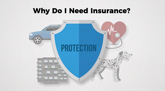 Why Do I Need Insurance? Illustration of protection shield over building, pet car, and health care icons.