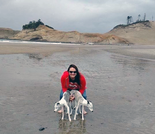 Whippets_at_the_beach_blog_size