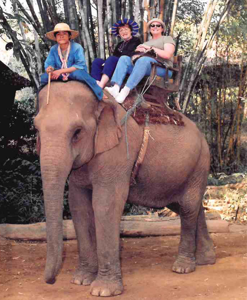 Marion riding an elephant in thailand