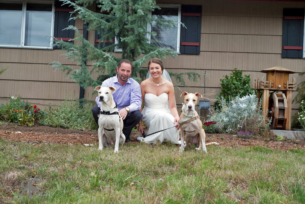 monica almroth wedding photo with her husband and two dogs