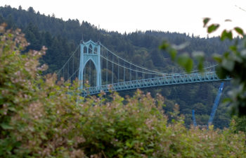 iron suspension bridge surrounded by autumn trees