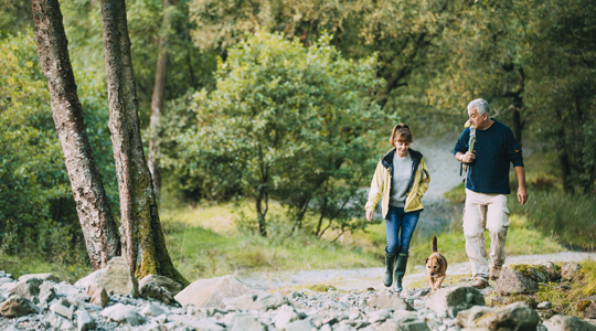 mature couple walking along a forest path with their dog
